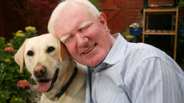 A guide dog with a service user