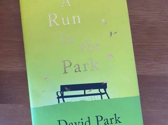 A run in the park - David Park